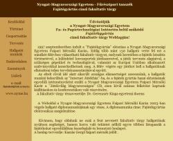 Kaszás Gergő - Fajátékgyártás elektronikus megjelenítése
